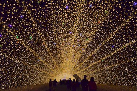 なばなの里の光の回廊