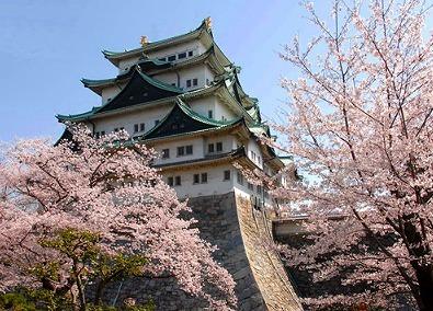 お花見 名古屋 2017