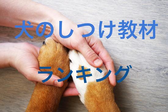 犬のしつけ方教材2018年最新ランキング!
