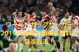 ラグビーワールドカップ2019決勝戦の動画をリアルタイムで無料視聴する方法