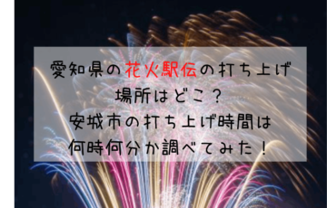愛知県の花火駅伝の打ち上げ場所はどこ?安城市の打ち上げ時間は何時何分か調べてみた!