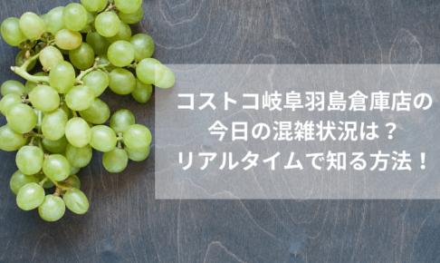 コストコ岐阜羽島倉庫店の今日の混雑状況は?リアルタイムで知る方法!
