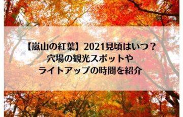 嵐山の紅葉2021見頃はいつ?穴場の観光スポットやライトアップの時間を紹介