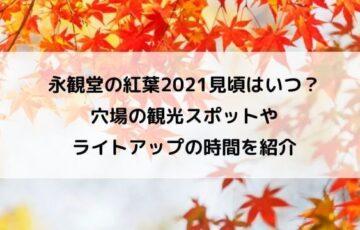 永観堂の紅葉2021見頃はいつ?穴場の観光スポットやライトアップの時間を紹介
