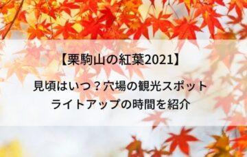 【栗駒山の紅葉2021】