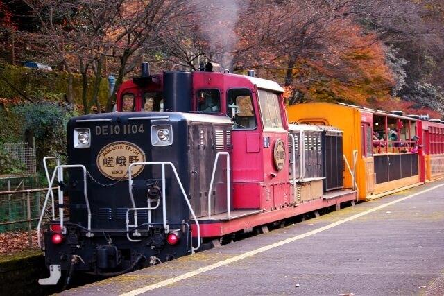 嵐山トロッコ電車からライトアップした紅葉を見る