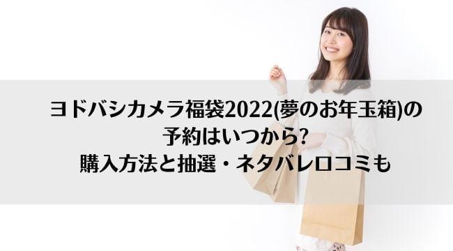 ヨドバシカメラ福袋2022(夢のお年玉箱)の予約はいつから?購入方法と抽選・ネタバレ口コミも